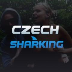 Czech Sharking