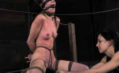 tied up bonnie day whipped all over body