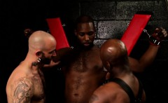 Black stud shaved in interracial trio