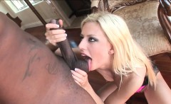 Platinum Blonde Love BBC