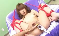 Extremely horny japanese MILFS sucking