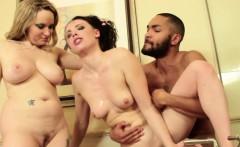 Milfs Hardcore Cherie DeVille, Casey Calvert, Aiden Starr, S