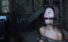 Restrained sub gagged with dildo