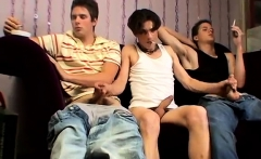 New american porn s and gay men knot David & The Twins